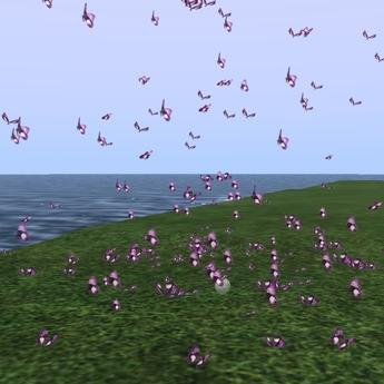 Butterflys Violet