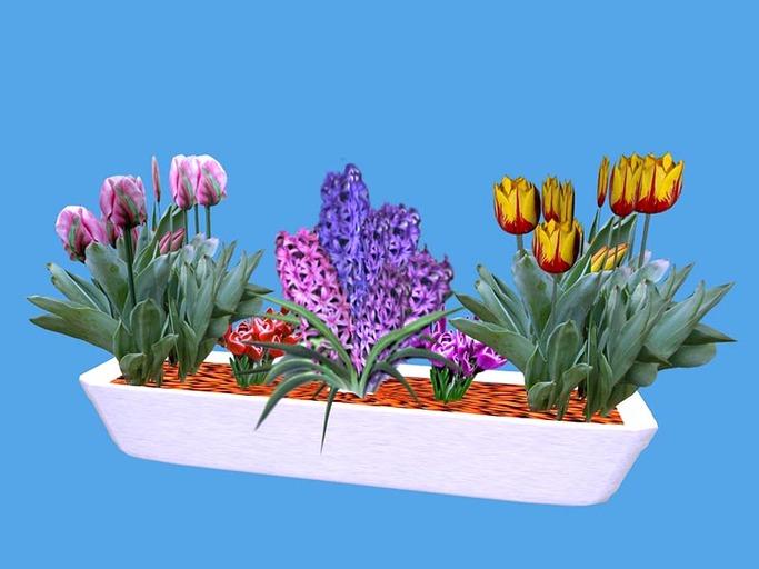 Spring Flowerbox 4