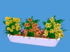 Spring Flowerbox 3