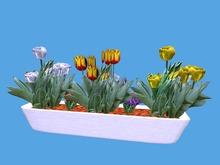 Spring Flowerbox 2