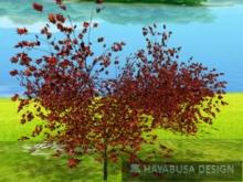 1 Prim TRUE Plant - Shrub, True 3D Trunk, True Foliage, Copy&Modify Autumn