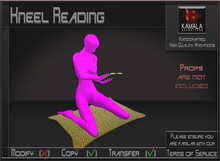 Seating *Kneel Reading Female* Animations for Builders