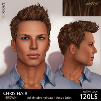 Hairstyle CHRIS - Brown - REDGRAVE