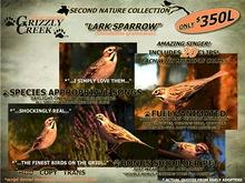 Grizzly Creek Lark Sparrow Songbird (Basic)