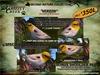 Grizzly Creek Songbird Verdin -Rez or Wear-