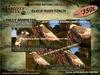 Grizzly Creek Songbird Black Rosy Finch -Rez or Wear-