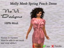 Molly Mesh Tunic Dress - Peach