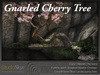 NEW! Gnarled Cherry Tree from Studio Skye 100%Mesh