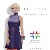 Prism Designs by Journey:  Chauncey in Bubbles