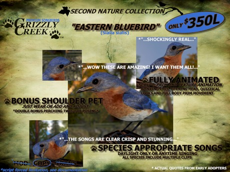 Grizzly Creek Songbird Eastern Bluebird -Rez or Wear-