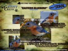Grizzly Creek Songbird Eastern Bluebird (Basic)
