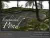 Skye enchanted woods 2