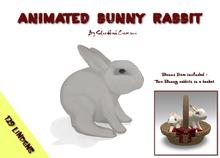 Animated Bunny Rabbit
