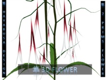 Revolutionary Mesh Flower plant, 2 Prims : 12 drop long pistils, twigs and trunk !