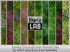 Fabric Lab Spring Groundcover Grass & Flowers Seamless Terrain Flower Field Texture Set