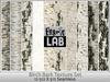 Fabric Lab Birch Bark Wood Tree Trunk Seamless Textures