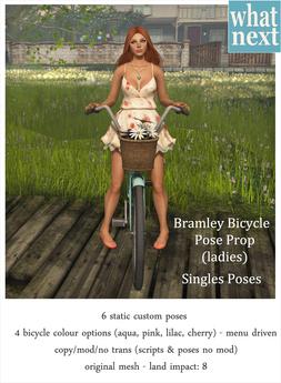 {what next} Bramley Bicycle Pose Prop Singles