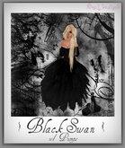 BlackSwan Gown~NixeL DesignS