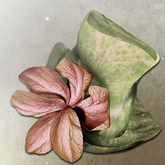 *LODE* Hat - Magnoli [green]