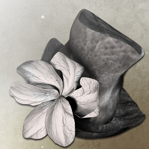 *LODE* Hat - Magnoli [black]