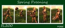 .::Poise::. Spring Preening
