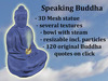 Buddha Speaking Blue
