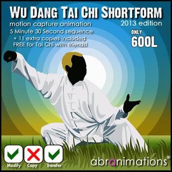 Wu Dang Tai Chi  Short Form (2013 )