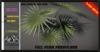 ALESTA << Mesh Parviflora Palm Plant Full Perm