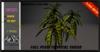 ALESTA << PROMO Mesh Tropical Shrub Plant 3 Full Perm