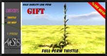 ALESTA << GIFT Mesh Thistle Plant Full Perm