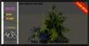 ALESTA << Mesh Bush Plant 4 Full Perm