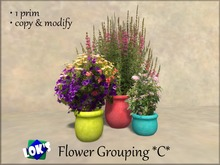 Lok's Flower Grouping C - 1 LI, copy and modify