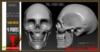 Skull vendor
