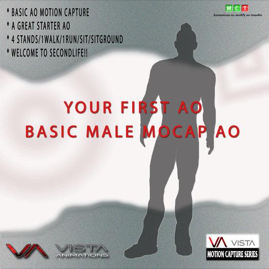 VISTA ANIMATIONS-MALE BASIC MOCAP AO-2013