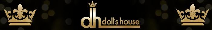 Banner doll house