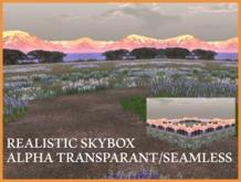 Skybox Full Perm. with Mountain Alpha
