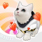 A.I.F WHITE MANX KITTY