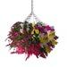Hanging Begonia Hanging Basket Plant