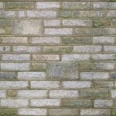 bricks wall texture 16