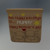 Mother's Day Bear Giftbox box