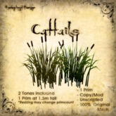[DDD] Cattails - Promo Retired Pricing!