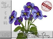 Blue Garden Pansy MC