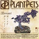 PlantPet Seed [Bonsai *Purple Leaf*]