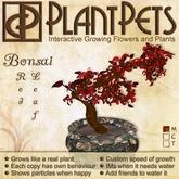 PlantPet Seed [Bonsai *Red Leaf*]