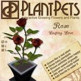 PlantPet Seed [Rose *Lasting Love*]