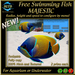 FREE SWIMMING FISH - MAJESTIC - UPDATE 2017