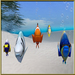 Super pack devant poissons photo annexe