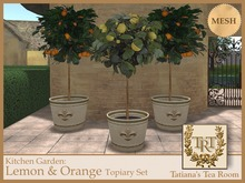 TTR-Kitchen Garden-Lemon & Orange Topiary Set