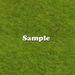 Grass copie