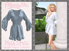 {Mesh} Vintage Frill Dress- Blues